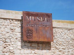 Al Museo Arqueológico se accede desde la Plaça de la Catedral
